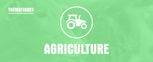 THEMATIQUE VOYAGES : Agriculture